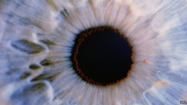 The necessary cells can be found in the back of everyone's eyes
