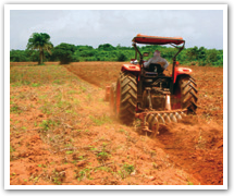 Agro Farming