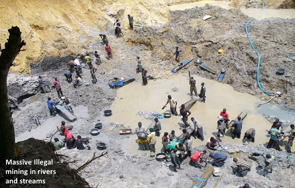 Massive Illegal Mining