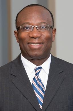(Dr. Linus Igwemezie, Head of the Novartis Malaria Initiative)