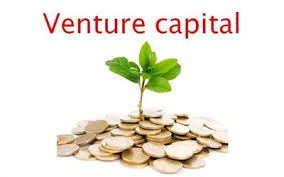 Venture Capital Trust Fund