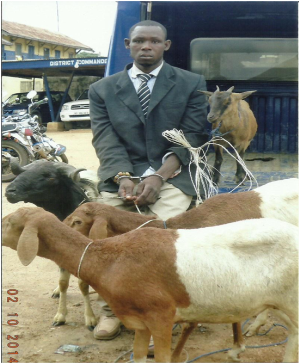 Kofi (in suit) standing behind the animals