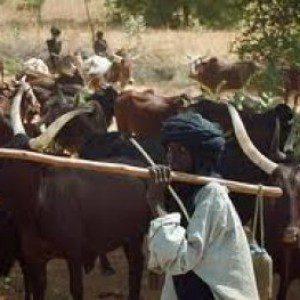 wpid-fulani-herdsmen-1.jpg