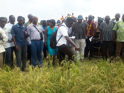 Farmers in Dadome attend a field day demonstrating UDP technology