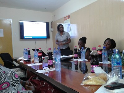 Mrs Mary Magdalene Yarteh presenting the findings on CSEC