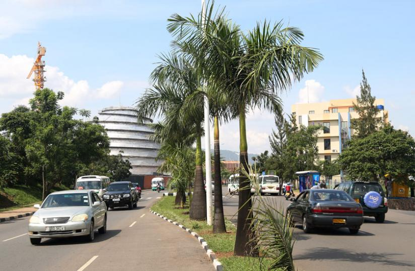 Palm trees along airport road. The City values the trees so much that destroying one accrues a fine of a million francs. (J. Mbanda)