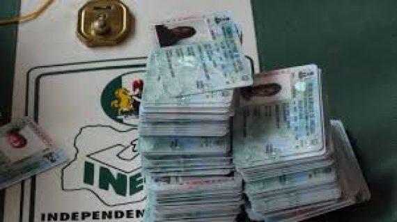 Voter IDs