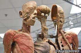 corpse museum