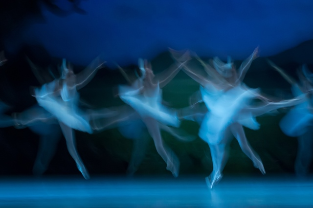 "Members of the Hungarian National Ballet perform ""Swan Lake"" during a dress rehearsal at the Hungarian State Opera House in Budapest, Hungary, on April 21, 2015. (Xinhua/Attila Volgyi)"