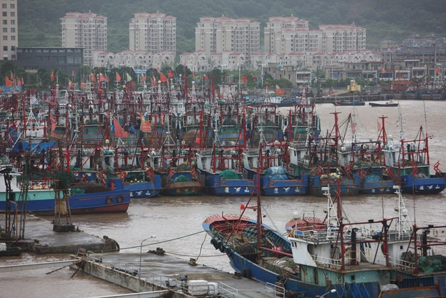 Fishing boats take shelter at a harbor in Xiangshan County, Ningbo City of east China's Zhejiang Province, July 10, 2015. Typhoon Chan-Hom is expected to land somewhere between Sanmen and Zhoushan in east China's Zhejiang Province on Saturday afternoon, the National Meteorological Center (NMC) forecast. (Xinhua/Zhang Peijian) (zwx)