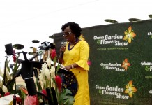 Chief Executive Officer of Stratcomm Africa Ms. Esther A.N Cobbah