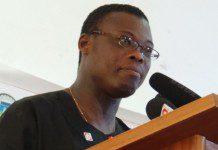 Fiifi Kwetey, Agric Minister