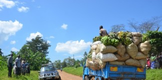 Photo taken on Nov. 26, 2015 shows a truck loaded with sacks of agricultural produce along the muddy Sironko-Mbale road at Bugusege trading centre, eastern Uganda. As a country where over 80% of the population relies on agriculture, the Uganda government is prioritizing growth of infrastructure to economically viable areas to ease access to the markets. (Xinhua/Daniel Edyegu)