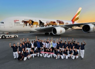 Emirates-A380-Six-Endangered-Species-Decal-with-Team