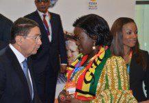 Mrs Elisabeth Ofosu-Adjare Tourism