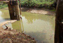Nsawam Water crisis