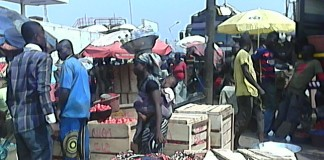 Tomatoes traders