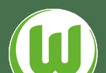 wolfsburg fc