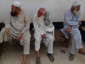 Police arrest 13 Pakistanis