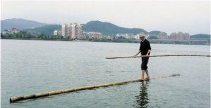 Fang Shuyun crosses the Fuchun River on a bamboo stick. [Zhejiang Online]