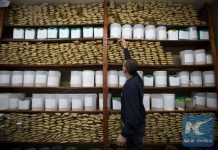 """Image taken on May 11, 2016, of an employee storing a backup sample of soy seeds, in the Soy Gathering, Conditioning and Marketing Plant of the agricultural cooperative """"Argentine Federated Farmers"""" (AFA, for its acronym in Spanish), which processes and collects around 120,000 tons of soy per year, in Maciel city, north of Rosario, Santa Fe province, 400km away from Buenos Aires, Argentina. (Xinhua/Martin Zabala)"""