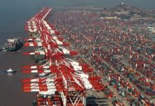 The Yangshan port area in the Shanghai free trade zone. [Photo/Xinhua