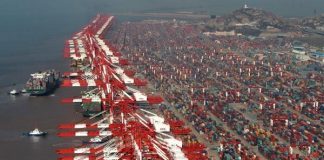 The Yangshan port area in the Shanghai free trade zone. [Photo/Xinhua