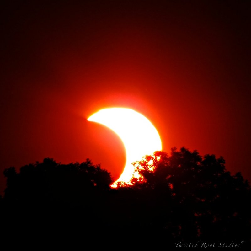 Solar eclipse leaves 'ring of fire' across Africa