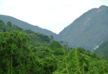 Eastern Arc Mountains