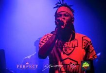Stonebwoy in Australia (on stage at Metro city in Perth)
