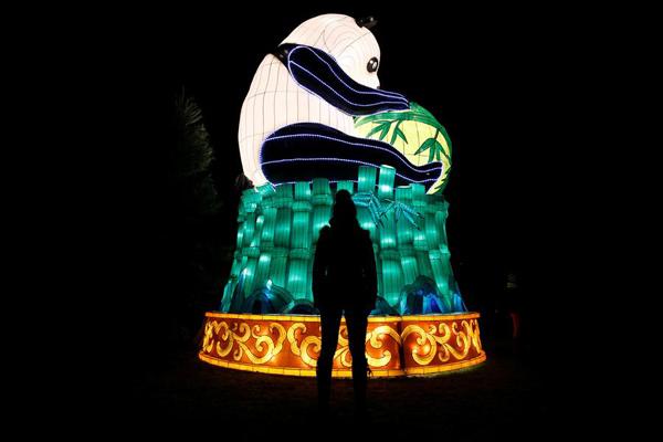 Silk Road lanterns light up British gardens for Lunar New Year