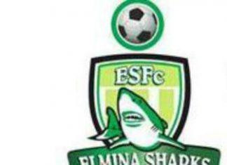 Elmina Shark