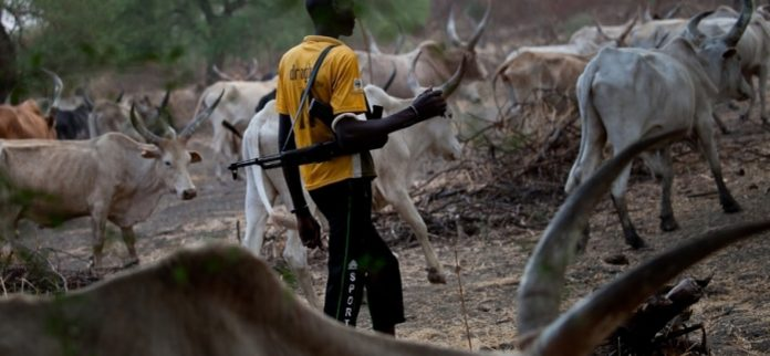 herdsmen-fulani
