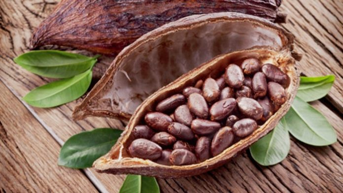 Cocoa has been the main cash crop for ghana.