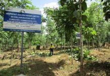 Newmont Ghana Environmental Practices