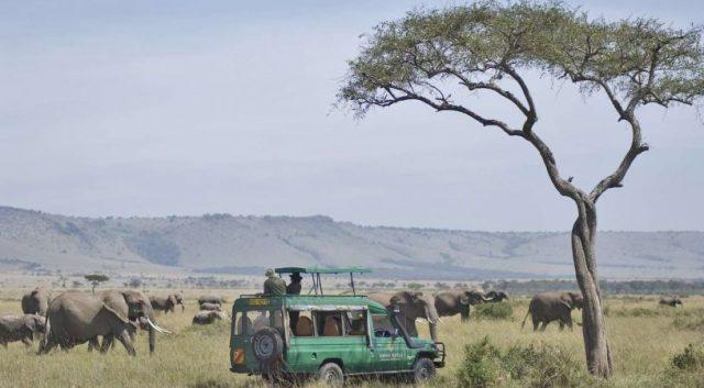 Travers take a tour of the Mara, image courtesy: Mara Serena Lodge