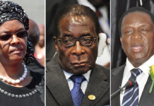 Zimbabwe ZANU-PF figures involved in factional disputes includes Grace Mugabe, Emmerson Mnangagwa and President Mugabe
