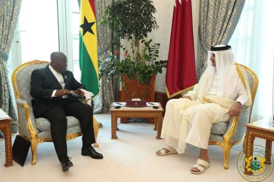 President meets Emir of Qatar