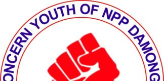 New Patriotic Party (NPP) in the Damongo constituency