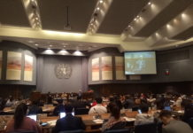 Asia Pacific Forum on Sustainable Development (APFSD)