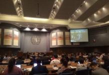 Asia Pacific Forum on Sustainable Development (APFSD)