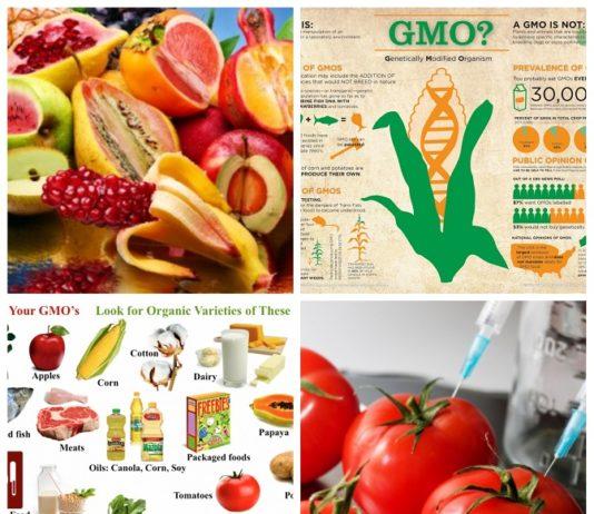 GMOs AND NON-GMOs