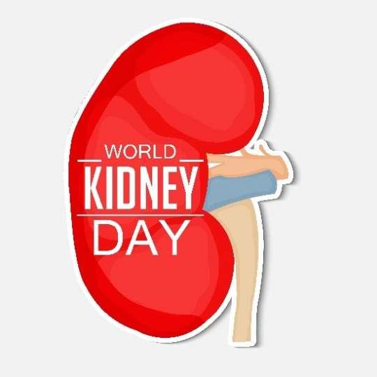 Kidney Day