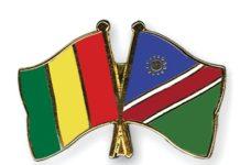 Flag Of Guinea Namibia