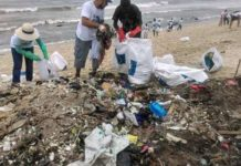 eu beach cleanup