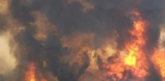 Australia bushfires
